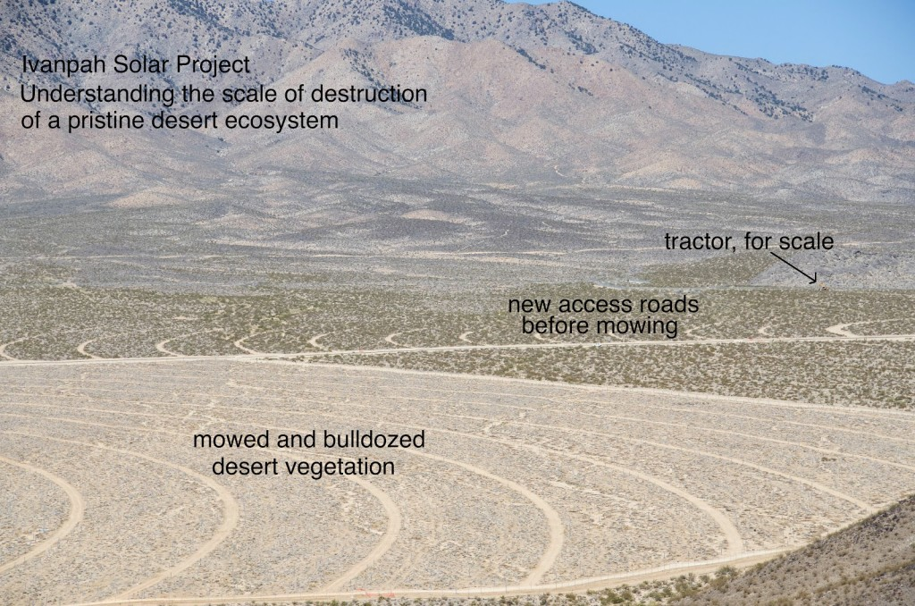 Ivanpah Destruction 3